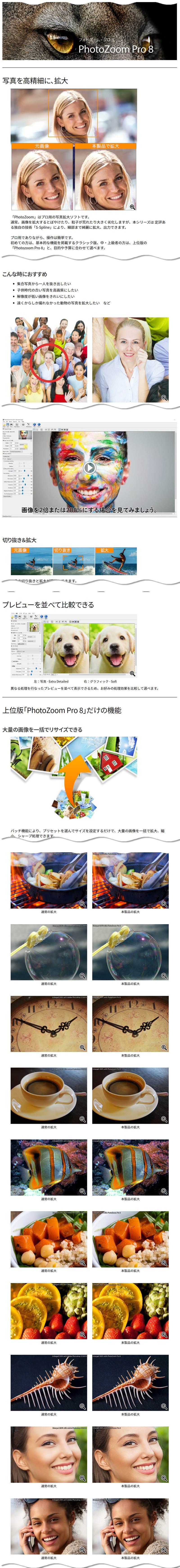 画像を簡単高画質で拡大、PhotoZoom Pro 8